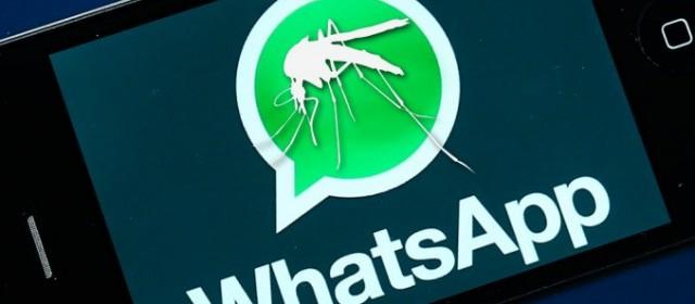 """Preocupación: una médica envió a sus amigas un audio de WhatsApp diciendo que """"se ocultan"""" datos sobre el dengue"""