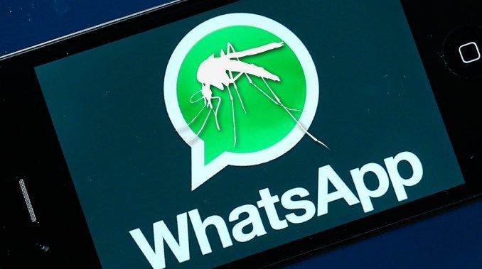 Preocupación: una médica envió a sus amigas un audio de WhatsApp diciendo que «se ocultan» datos sobre el dengue