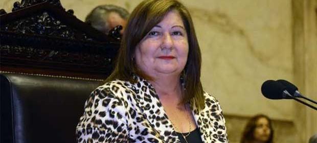 Diputada santiagueña figura entre los legisladores con mayor trabajo en las sesiones y en Comisión