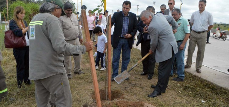 Infante junto a Gelid comenzaron una campaña Municipal de plantación de arboles por la ciudad