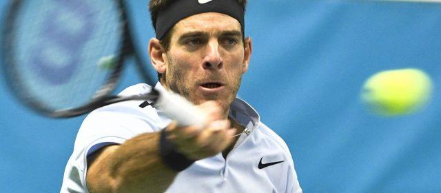 Del Potro derrotó a Dimitrov retuvo el título en el ATP de Estocolmo