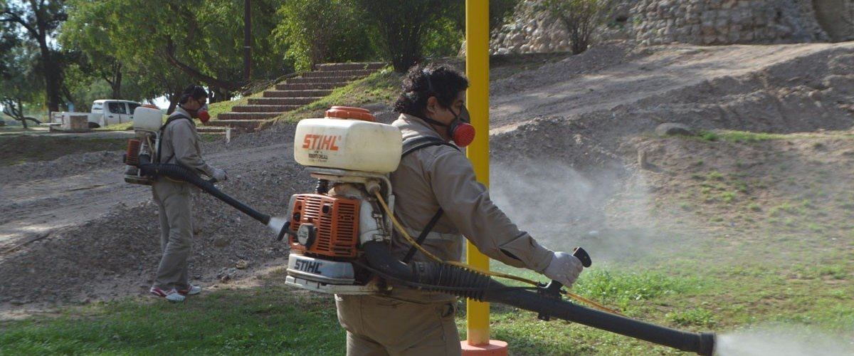 El municipio fumigó el Parque Aguirre y la costanera