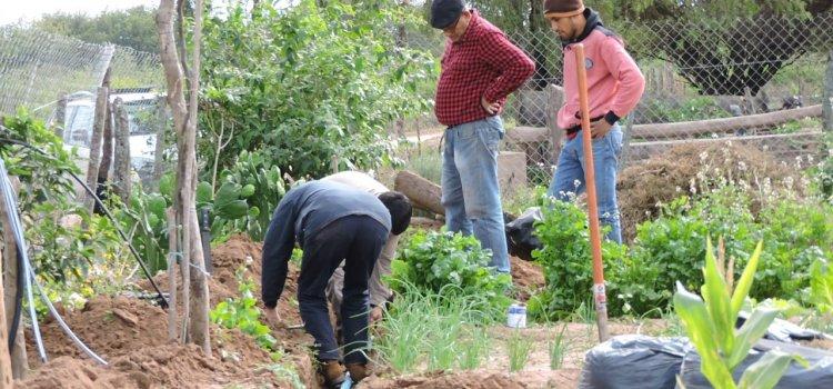 Capacitaron a productores de la Agricultura Familiar en riego por goteo en una huerta demostrativa