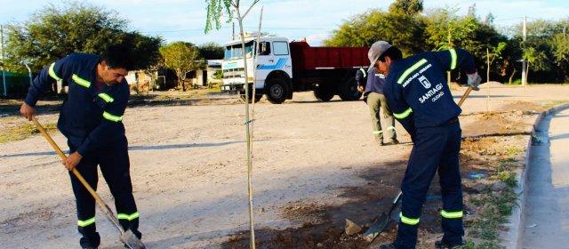 La forestación de la ciudad continúa con la plantación de especies arbóreas en plazas barriales