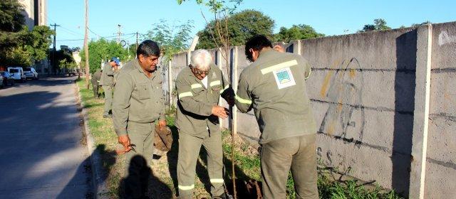 La Campaña de forestación 2018 sigue esta semana en el barrio América del Sur