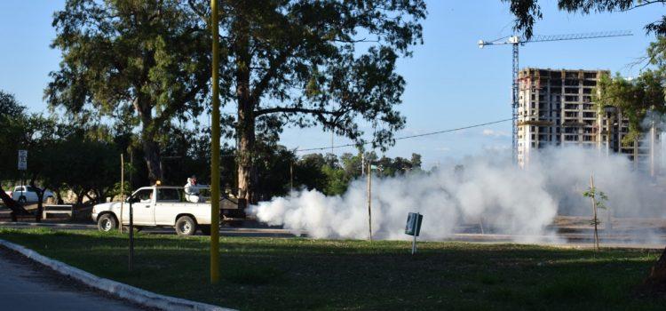 El municipio continúa con las tareas de fumigación