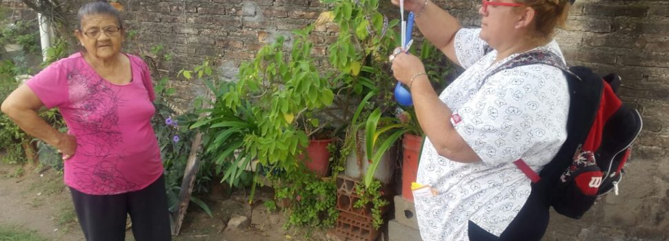 Continúa relevamiento de índices de larvas de  mosquito transmisor del Dengue en la Capital