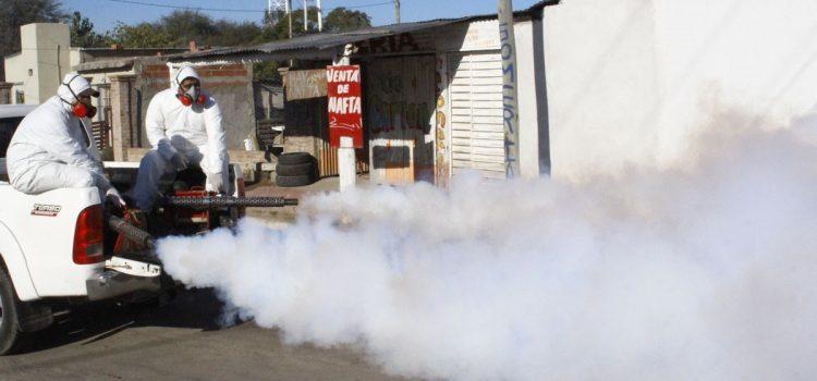 El municipio realizó nuevos operativos de fumigación