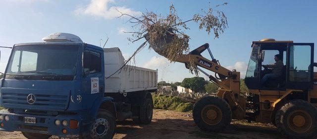 """Se concretaron trabajos de limpieza y mantenimiento en el cementerio """"La Piedad"""""""