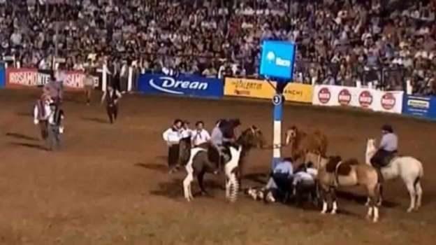 Murió un caballo en Jesús María y hay polémica