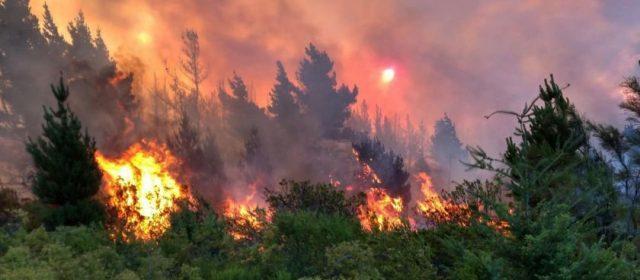 Termina un enero candente, agitado por inundaciones, incendios y hantavirus