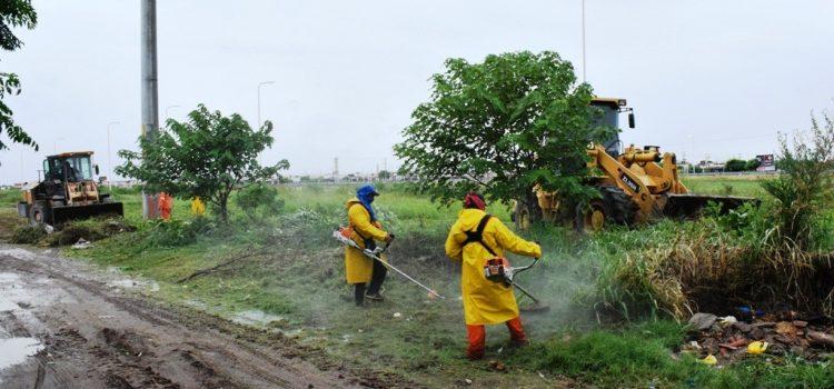 El municipio realizó cuatro operativos de desmalezamiento en diferentes sectores de la ciudad
