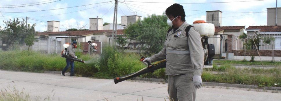 Se intensifican los operativos de fumigación en la ciudad