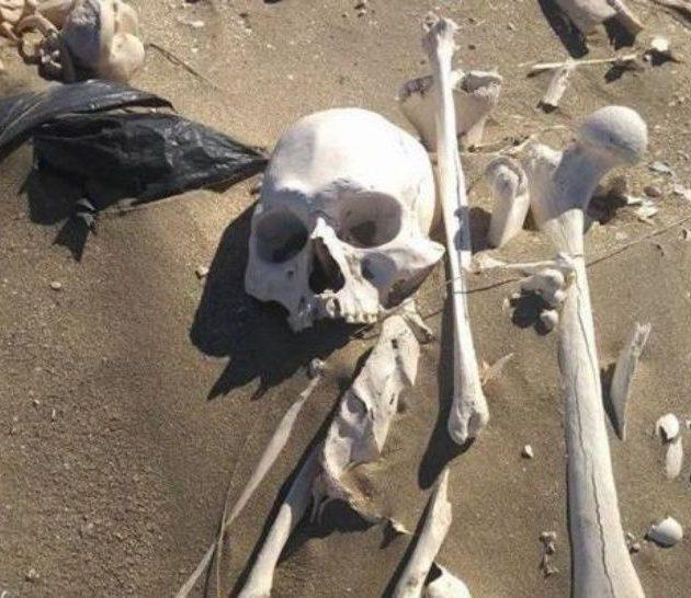 Encuentran huesos humanos en un canal