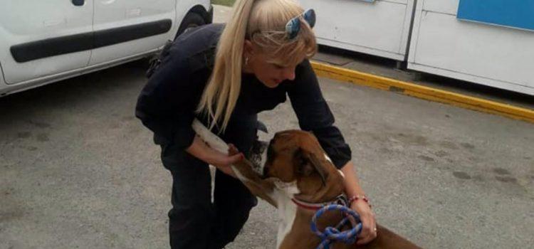 Una policía rescató a un perro maltratado en su hogar y dejó una lección que se viralizó