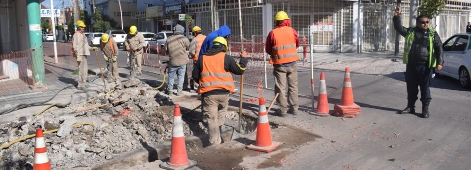 Reducen el tránsito a media calzada de calle céntrica por obras