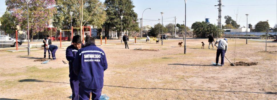 El municipio realizó una nueva plantación en el paseo Octavio Gauna
