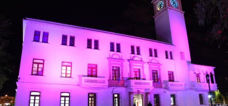 Casa de Gobierno iluminada de rosa