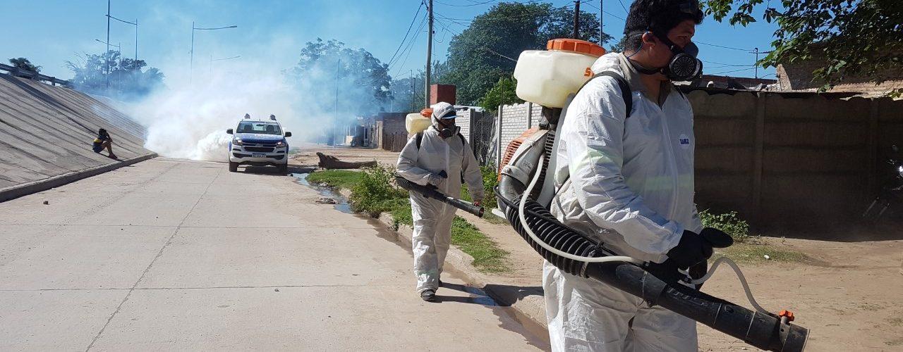La Dirección de Salud del municipio indicó que los mosquitos que proliferan no es la especie que transmite el dengue
